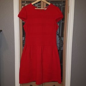 Girls from Savoy Red Cap Sleeve Ponte Dress 14